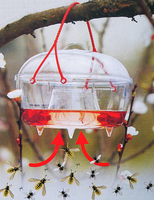 Insektenfalle