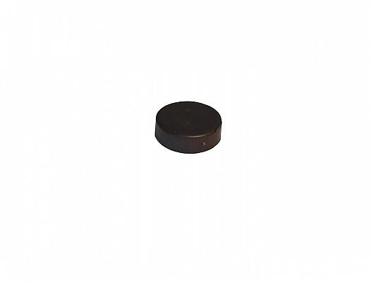 Magnet für Agata
