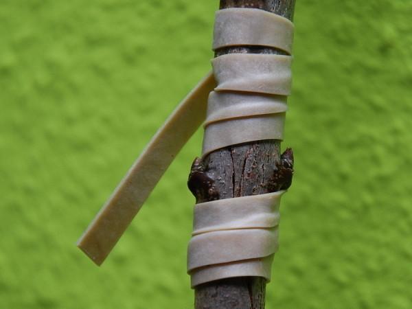 Veredlungsband  gummi